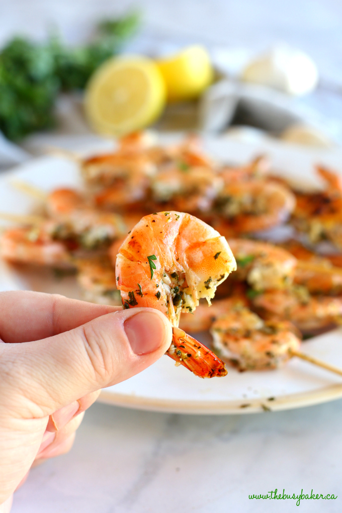 These Lemon Garlic Grilled Shrimp Skewers make the perfect addition to any healthy meal! Marinated in fresh garlic, lemon, and white wine, these grilled shrimp are perfect for summer barbecues or grilled indoors any time of year! Recipe from thebusybaker.ca! #shrimpskewers #lemongarlicshrimp #easyshrimprecipe #healthyshrimprecipe