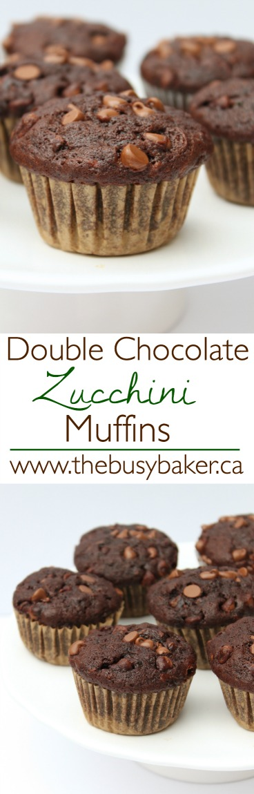 These healthier Double Chocolate Zucchini Muffins are packed with veggies! via @busybakerblog