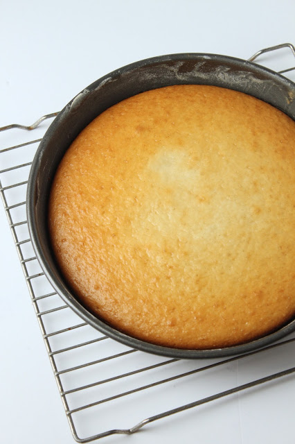 vanilla cake waiting to be frosted