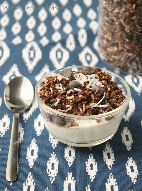 a bowl of homemade granola topped with shredded coconut and chocolate chips