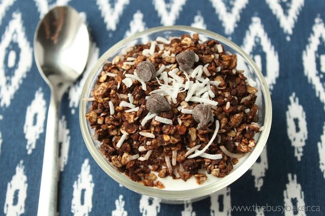 bowl of chocolate coconut granola and a spoon