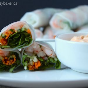 shrimp and vegetable spring rolls with a side of spicy aioli