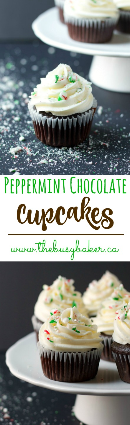 These Peppermint Chocolate Cupcakes are the perfect holiday treat! Recipe from thebusybaker.ca! via @busybakerblog
