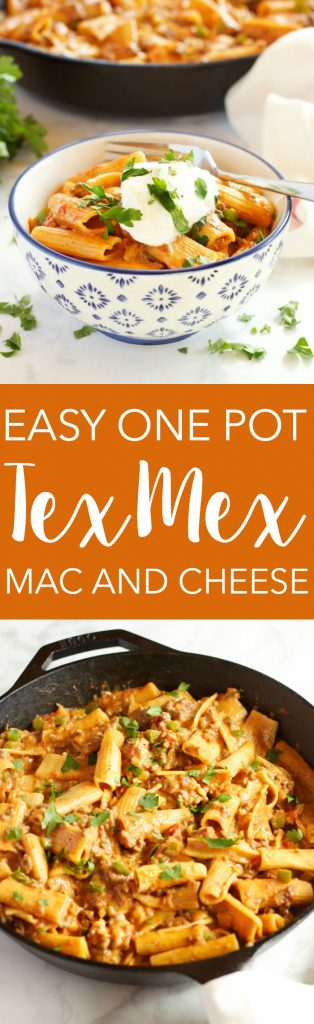 Easy One Pot Tex Mex Mac and Cheese - The Busy Baker