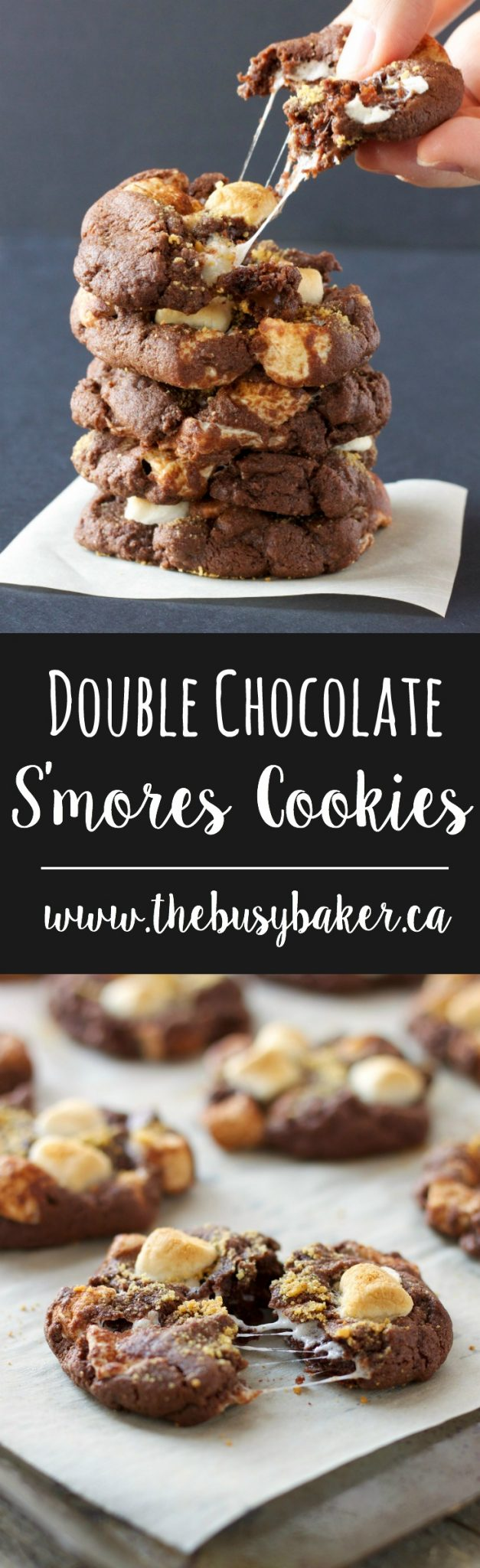 These Double Chocolate S'mores Cookies are sweet and chewy and bursting with melted chocolate and toasted marshmallows.Just everybody's favorite campfire treat! #DoubleChocolate #S'mores #Cookies #Campfire via @busybakerblog