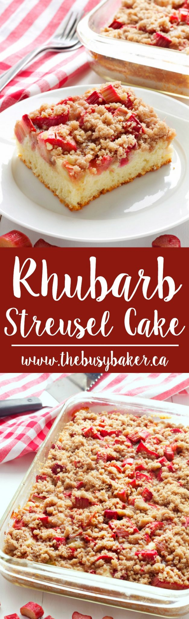 This Rhubarb Streusel Cake recipe is just like Grandma used to make! It's the perfect tender cake recipe with fresh rhubarb and a sweet and crispy streusel topping! Recipe from thebusybaker.ca! #rhubarbcake #streuselcake #sheetcake #rhubarbdessert via @busybakerblog