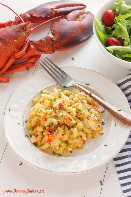 plate of fresh lobster macaroni and cheese