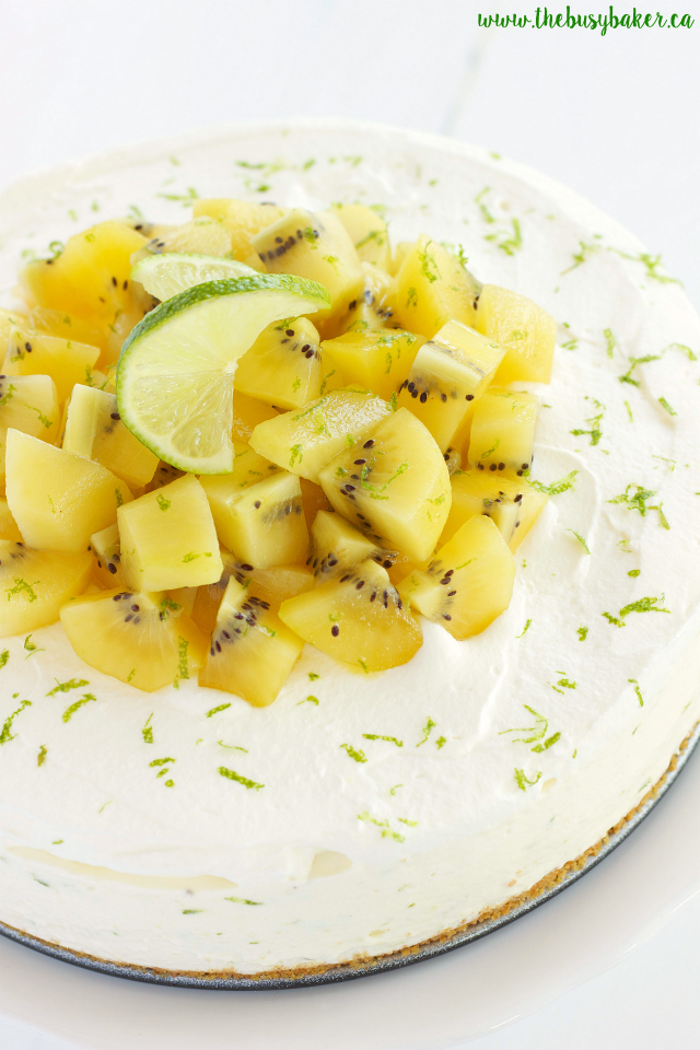 Kiwi Lime No-Bake Cheesecake www.thebusybaker.ca