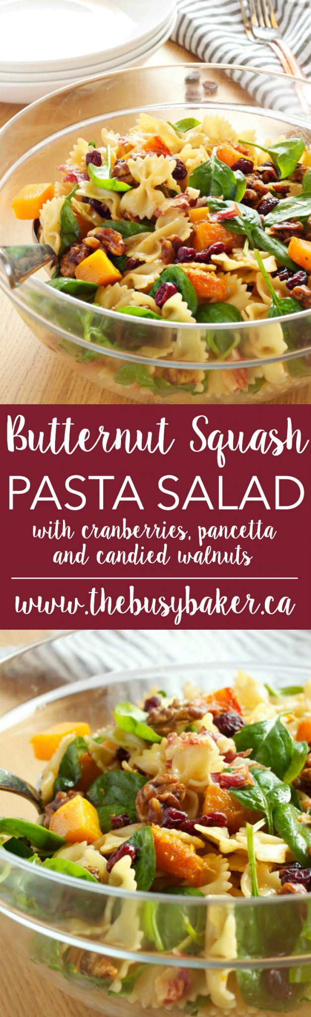 This Butternut Squash Pasta Salad is a delicious holiday side dish for fall and winter made with Cranberries, Pancetta, and Candied Walnuts! Recipe from thebusybaker.ca! via @busybakerblog
