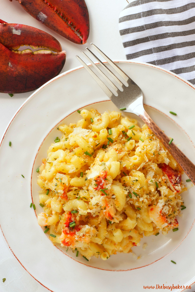 http://www.thebusybaker.ca/2016/06/one-pan-lobster-mac-and-cheese.html