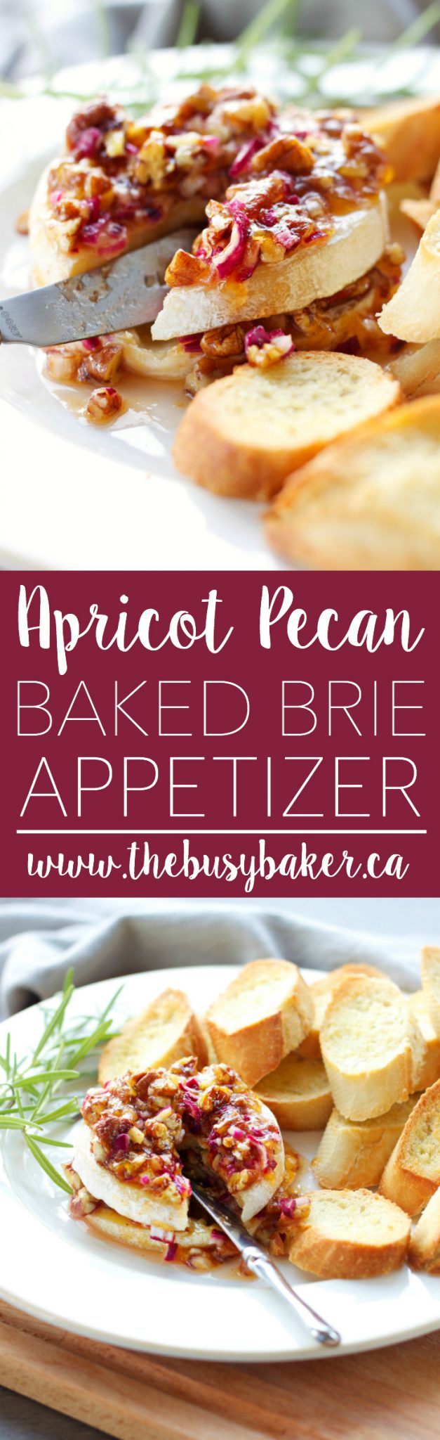 This 4-ingredient Apricot Pecan Baked Brie Appetizer is easy to make and it's perfect for holiday parties because it's so rich-tasting and decadent! Recipe from thebusybaker.ca! via @busybakerblog