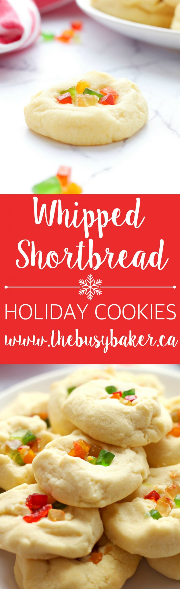 These Whipped Shortbread Holiday Cookies are the perfect Christmas shortbread cookie! They're easy to make and turn out perfectly every time! Recipe from thebusybaker.ca! via @busybakerblog