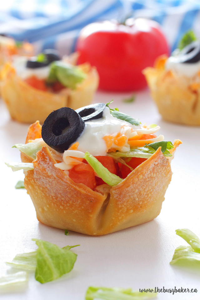 https://www.thebusybaker.ca/2016/05/mexican-taco-dip-wonton-cups.html