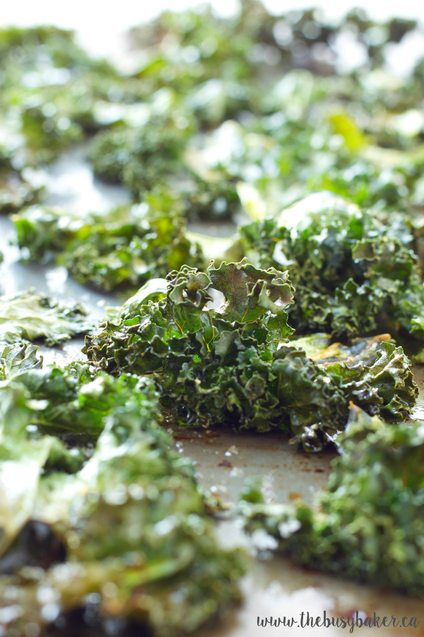 https://thebusybaker.ca/2016/03/sea-salt-and-garlic-kale-chips.html