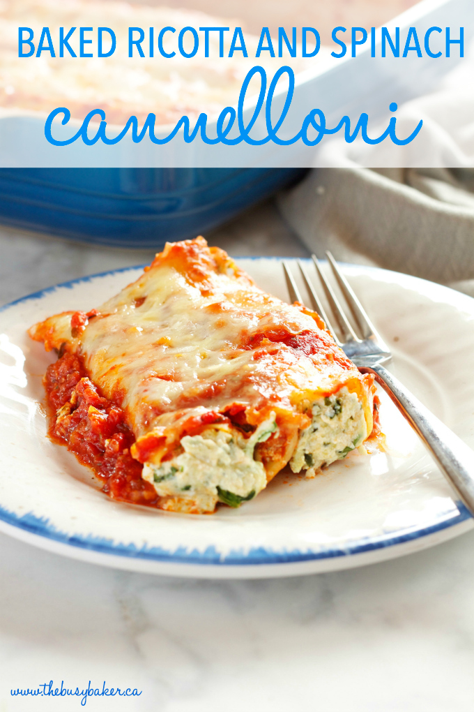 How to Make Vegetarian Cannelloni photo