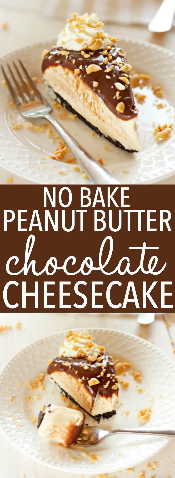 An Easy No Bake Creamy Peanut Butter Chocolate Cheesecake with a chocolate cookie base, a creamy peanut butter cheesecake filling, & milk chocolate ganache! The perfect no bake peanut butter chocolate dessert! Recipe from thebusybaker.ca! via @busybakerblog