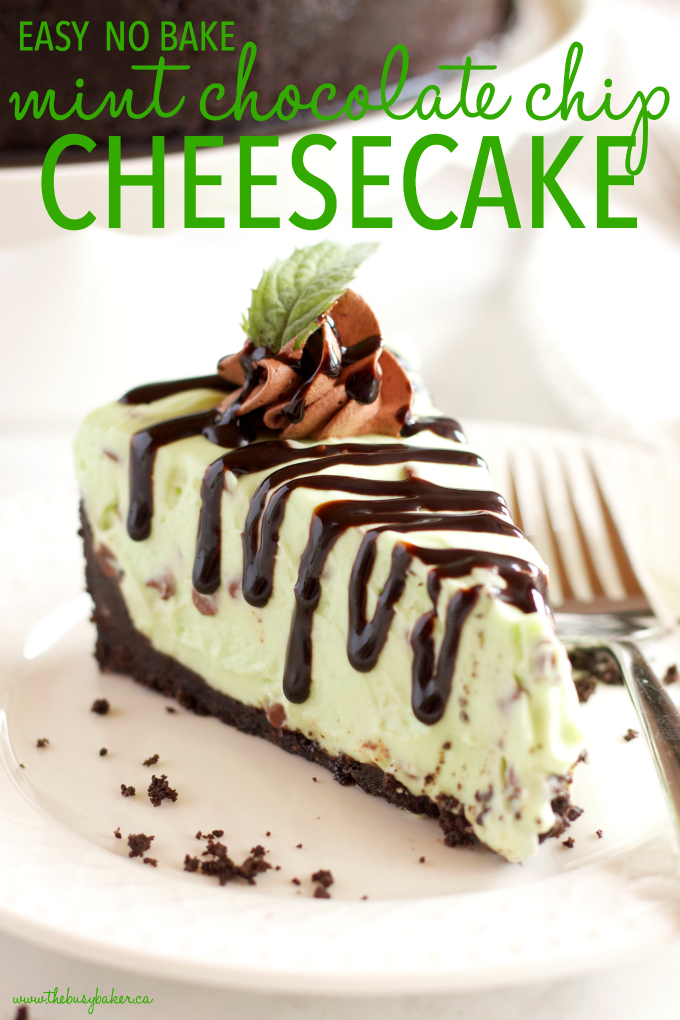 This Easy No Bake Mint Chocolate Chip Cheesecake is ultra creamy, flavored with mint and chocolate, and so easy to make with only a few ingredients! It's gelatin-free and is a mint chocolate lover's dream dessert! #mintchocolate #nobakecheesecake #easynobakedessert