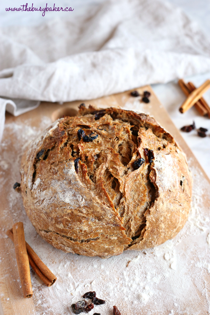 This Easy No Knead Cinnamon Raisin Artisan Bread is crusty on the outside, tender and fluffy on the inside and packed with sweet cinnamon flavour and juicy raisins. And it's SO easy to make this bakery-style loaf at home in your own kitchen! Recipe from thebusybaker.ca! #bakerybread #nokneadbread #artisanbread #bestcinnamonraisinbread