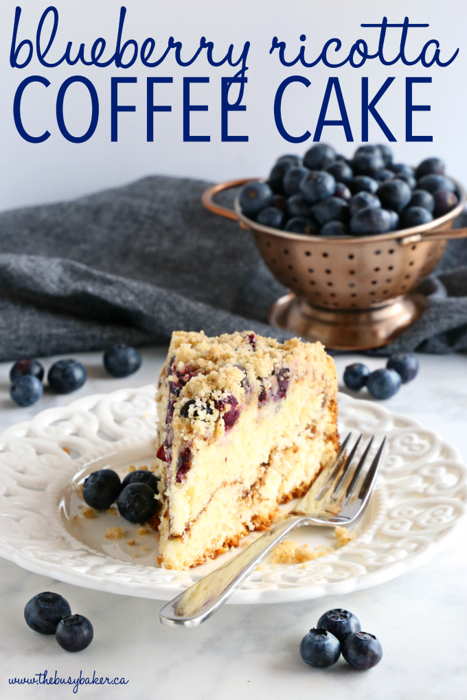 blueberry coffee cake cinnamon streusel slice