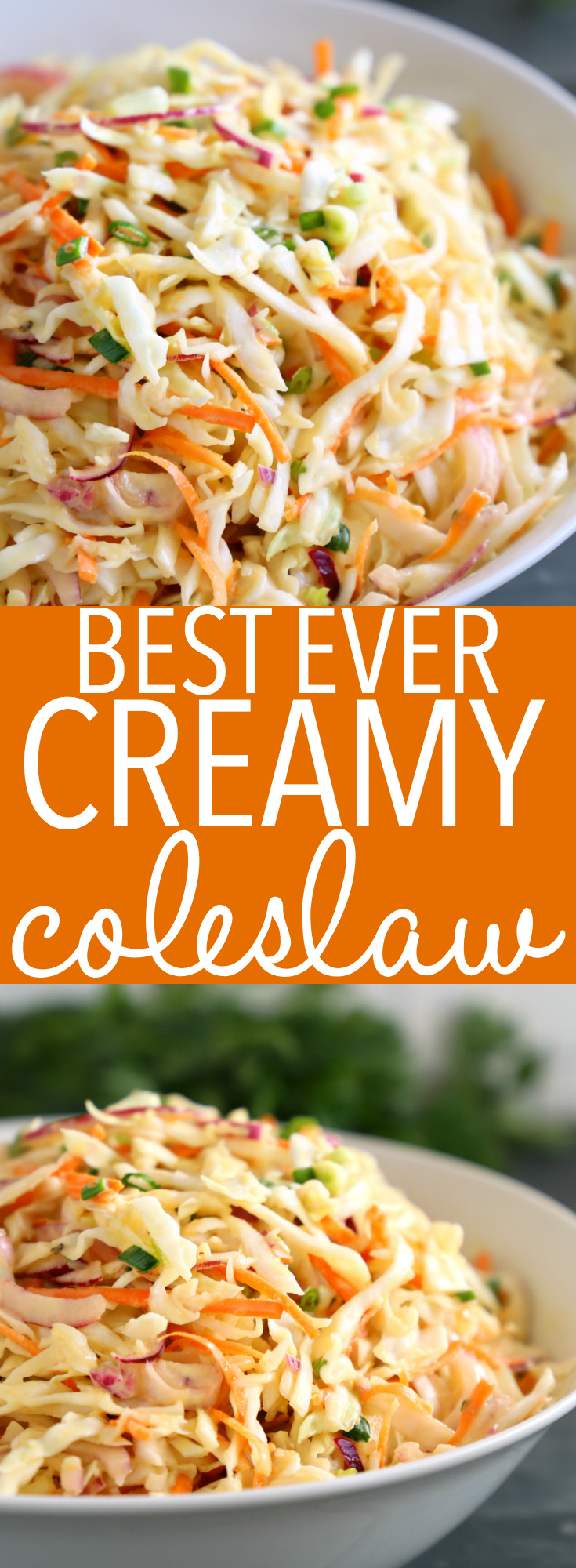 This Best Ever Creamy Coleslaw is the only coleslaw recipe you'll need for all your summer parties and barbecues! It's easy to make with just a few simple ingredients! Recipe from thebusybaker.ca! #bestcoleslaw #easycoleslaw #creamycoleslaw via @busybakerblog