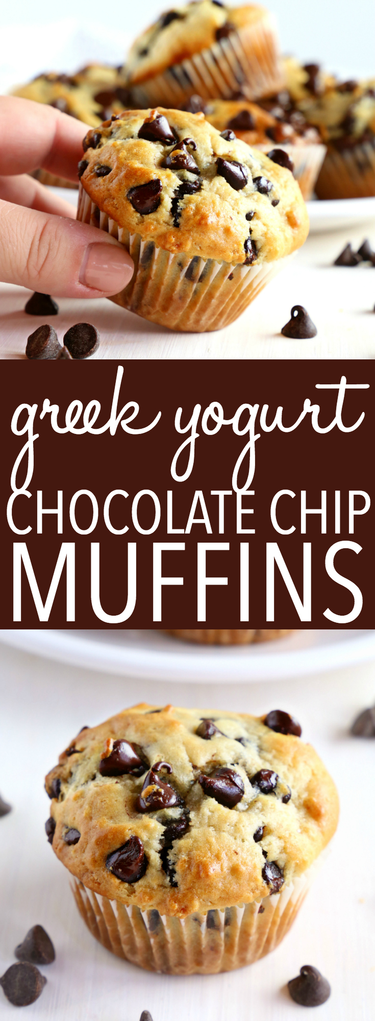 These Best Ever Greek Yogurt Chocolate Chip Muffins are the perfect low-fat sweet snack made with Greek yogurt! They're quick and easy to make, and they're perfectly moist and tender! Recipe from thebusybaker.ca! #muffins #easy #recipe #chocolatechip #chocolate #homemade #bestever #bestmuffins #sweet #treat #dessert #breakfast #lowfat via @busybakerblog