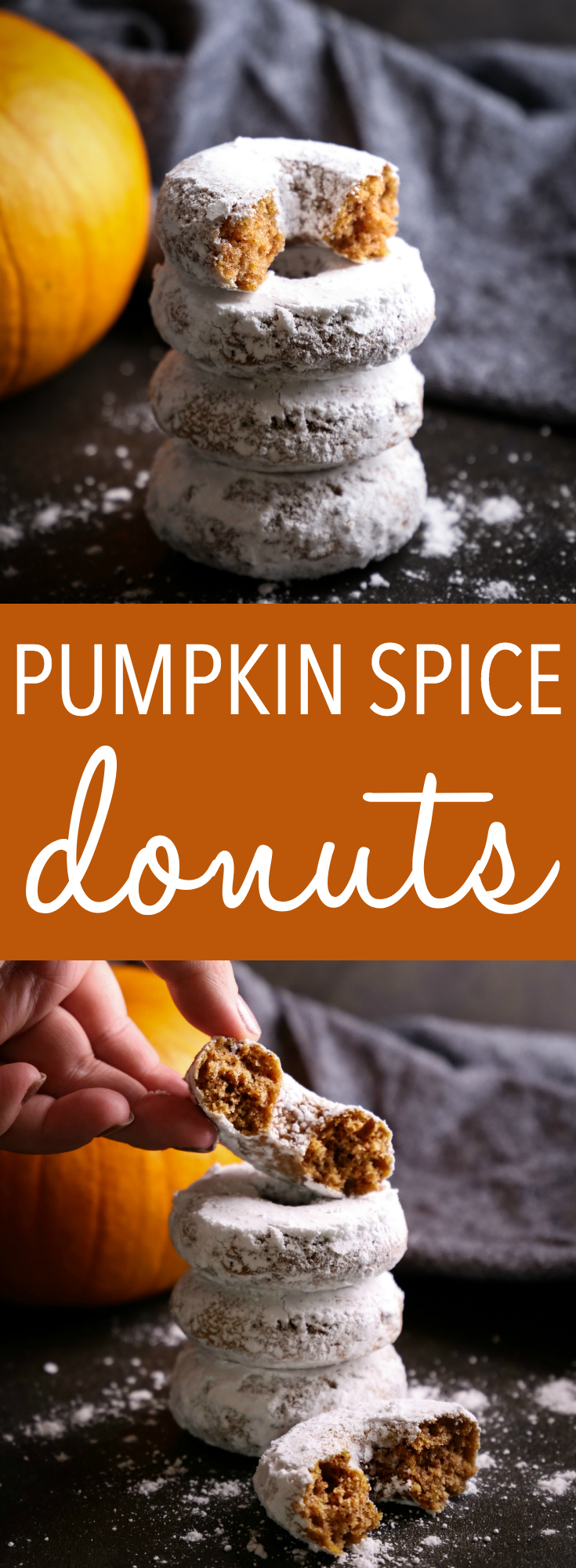 These Pumpkin Spice Baked Donuts are the perfect easy-to-make fall dessert for donut lovers, made with real pumpkin and dipped in powdered sugar! Recipe from thebusybaker.ca! #donuts #pumpkin #fall #dessert #baking #powderedsugardonuts #treat #recipe #easytomake #onebowl #foodblog #autumn #pumpkinspice
