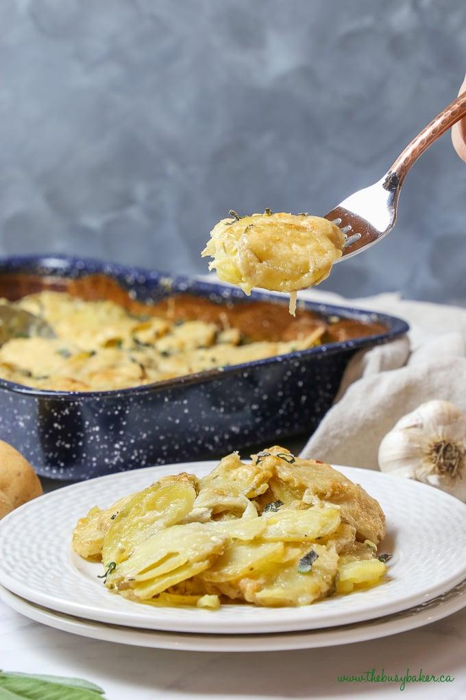 Easy Homemade Potato Gratin