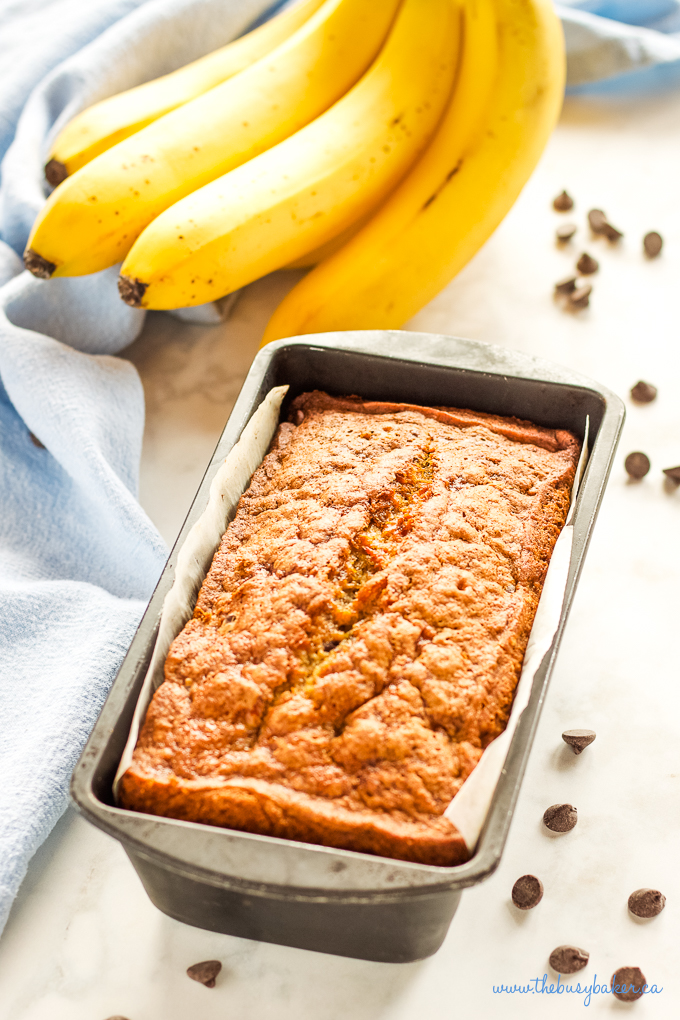 Best Ever Chocolate Chip Banana Bread in loaf pan with bananas