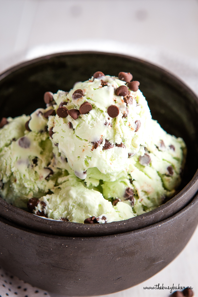 Mint Chocolate Chip Ice Cream in Black Bowl