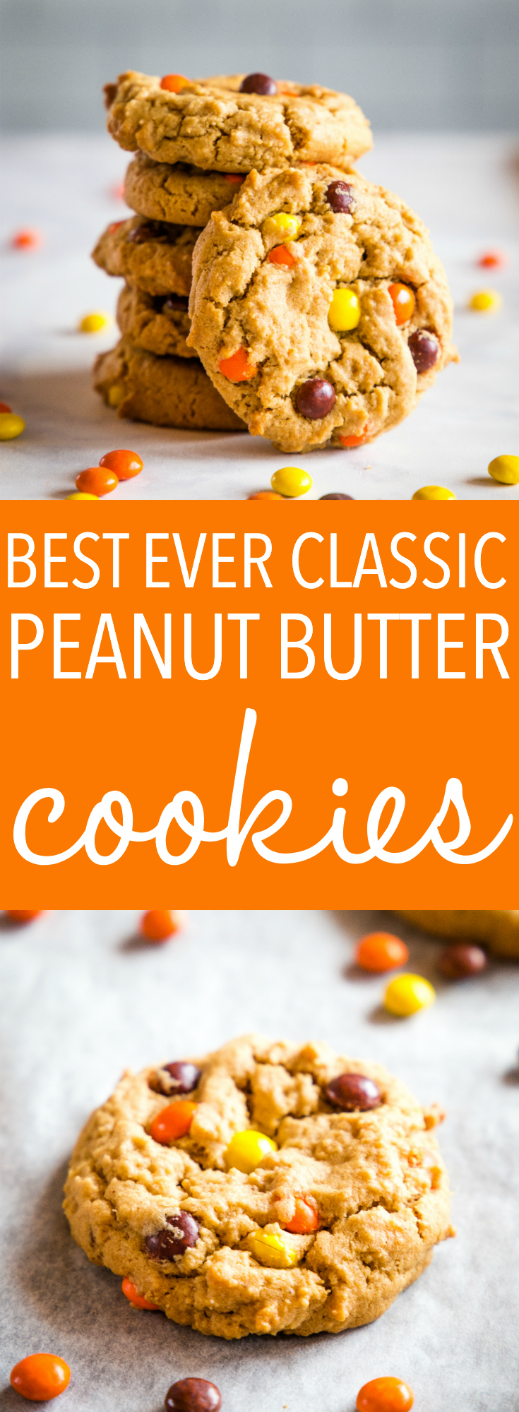 These Best Ever Peanut Butter Cookies are the perfect classic cookie recipe! Crispy on the outside, tender on the inside, and packed with nutty flavour and Reese's Pieces for an added crunch! Recipe from thebusybaker.ca! #cookies #snack #baking #easy #recipe #reeses #peanutbutter #cookie #baked #baker #foodblog via @busybakerblog