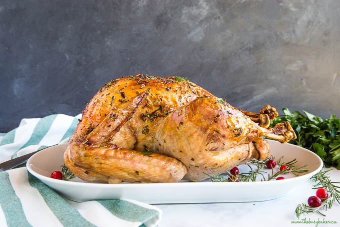 perfectly roasted turkey on white platter with cranberries and rosemary