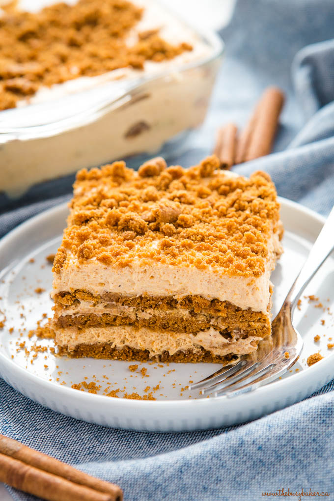 Slice of pumpkin gingerbread cake no bake with cinnamon