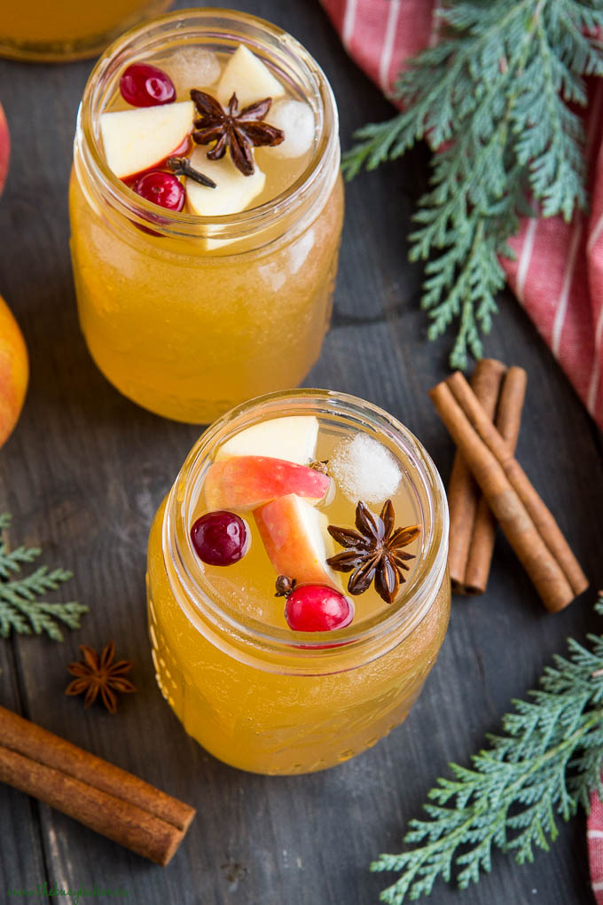 apple cider sangria in glasses with star anise, pieces of apple and cranberries