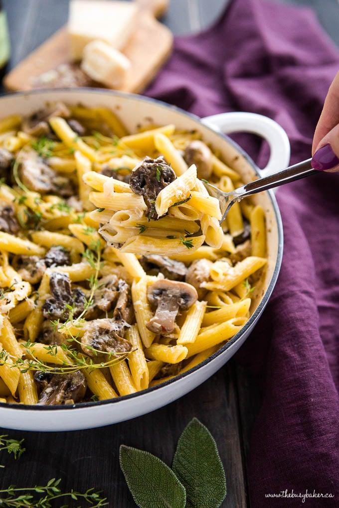 serving of creamy mushroom pasta on spoon
