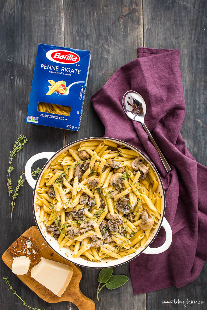 Creamy Champagne Mushroom Pasta with Penne and herbs