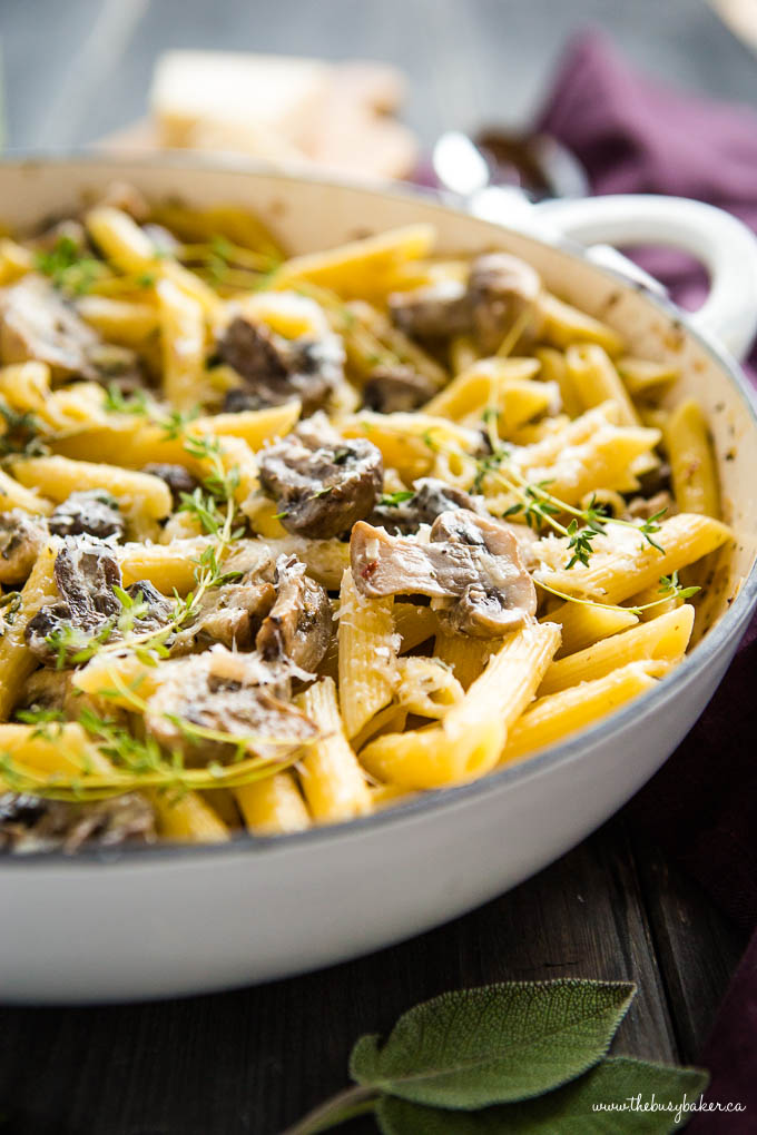 Creamy Champagne Mushroom Pasta in white cast iron pan with herbs