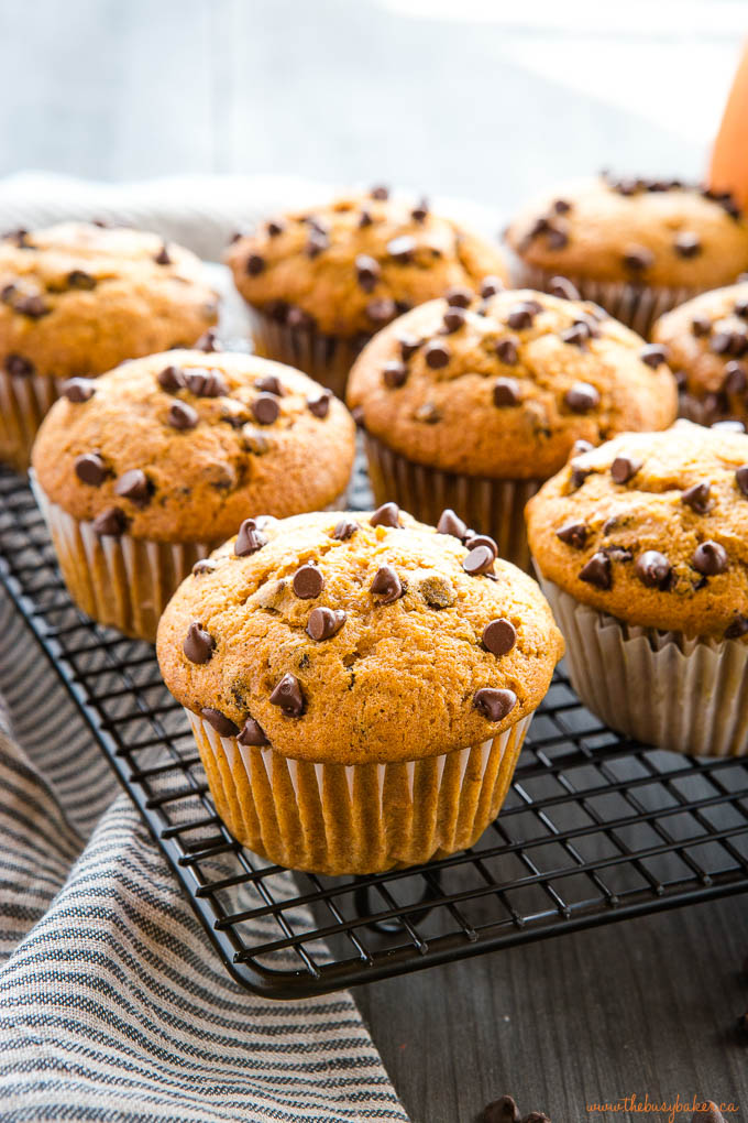 pumpkin chocolate chip muffins on black cooling rack