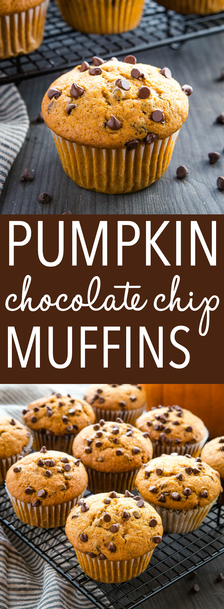Chocolate chip pumpkin muffins are the perfect sweet snack. Light, fluffy and full of real pumpkin and chocolate! Make this simple muffin recipe in one bowl! Recipe from thebusybaker.ca! #pumpkin #chocolatechip #muffins #baking #homebaking #fall #winter #easyrecipe #coffeebreak via @busybakerblog