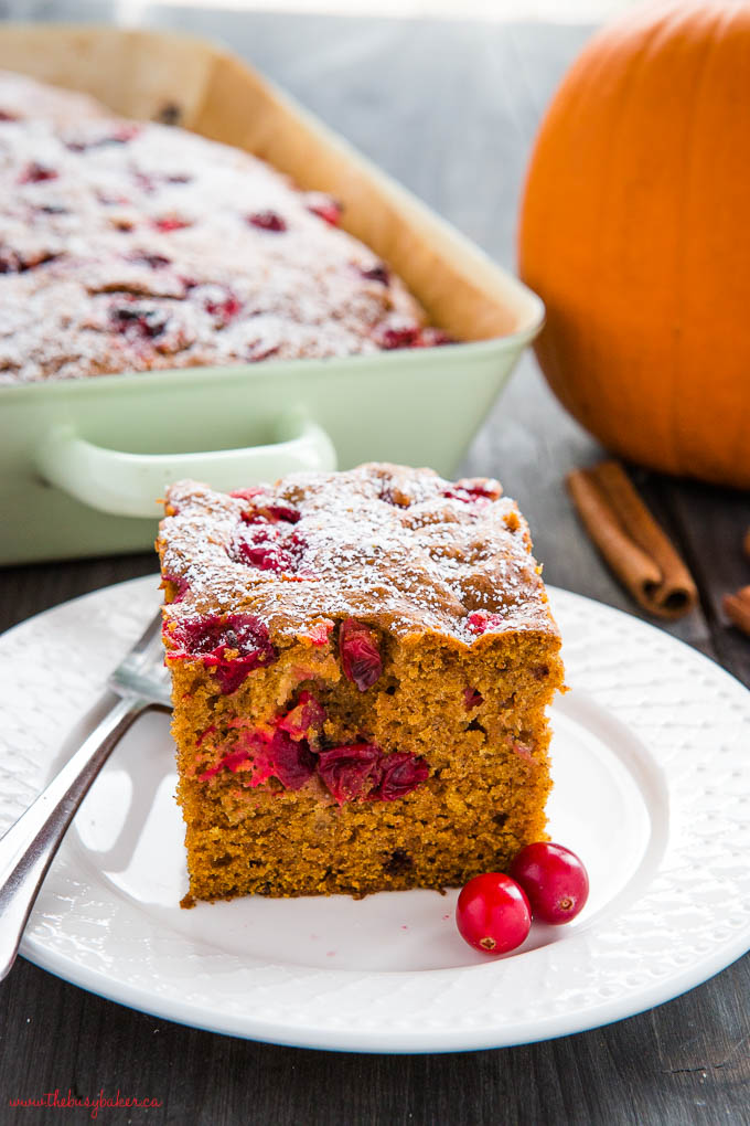 Slice of easy pumpkin cranberry cake on white plate