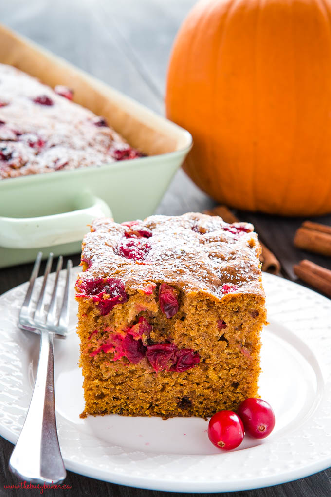easy pumpkin cranberry cake on white plate with fresh cranberries