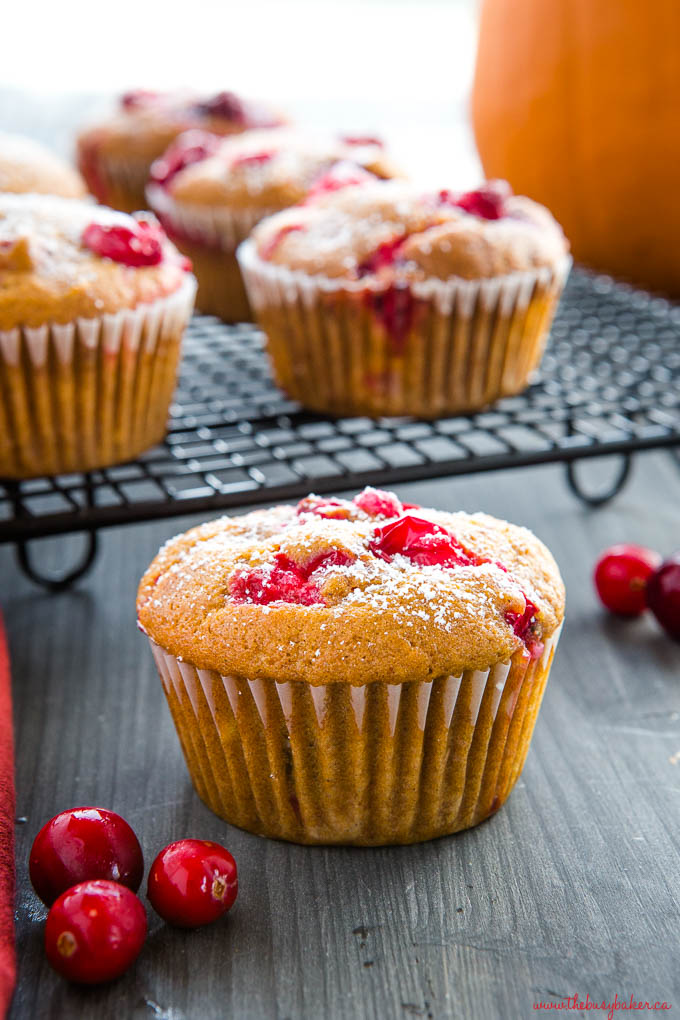 pumpkin cranberry muffin with powdered sugar