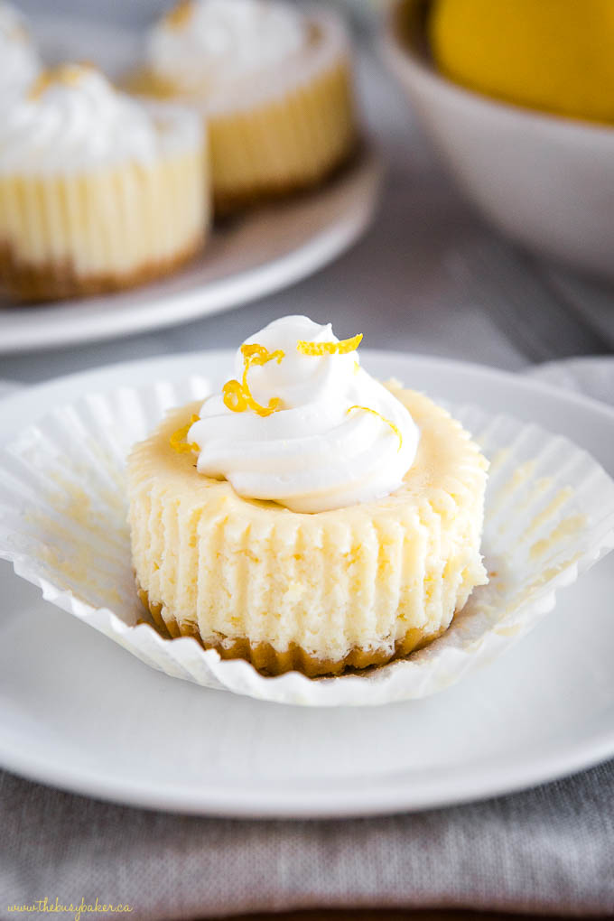 mini lemon cheesecake on plate