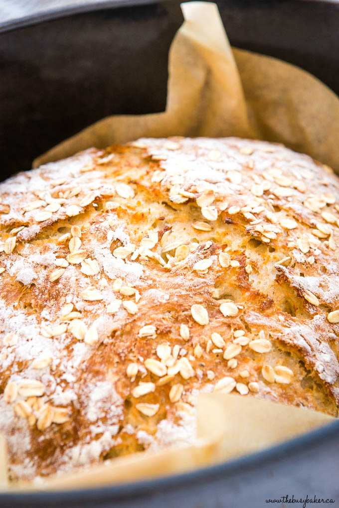 close up photo:: top crust of round loaf of homemade oat bread