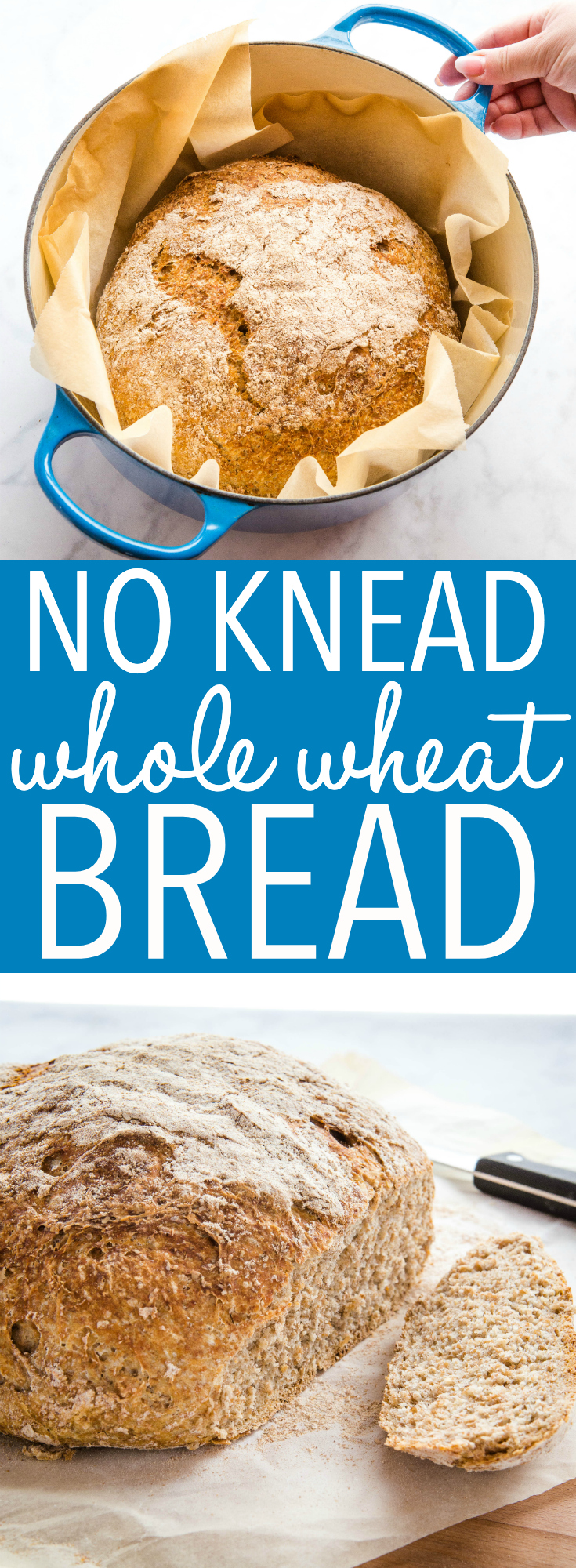 This No Knead Whole Wheat Artisan Bread is the perfect easy whole wheat bread recipe! No overnight rising, no kneading - it's the perfect hearty, crusty loaf! Recipe from thebusybaker.ca! #wholewheat #bread #homemade #homemadebread #wholegrain #dutchoven #howtomakebread #howtomakehomemadebread #healthybread #health via @busybakerblog