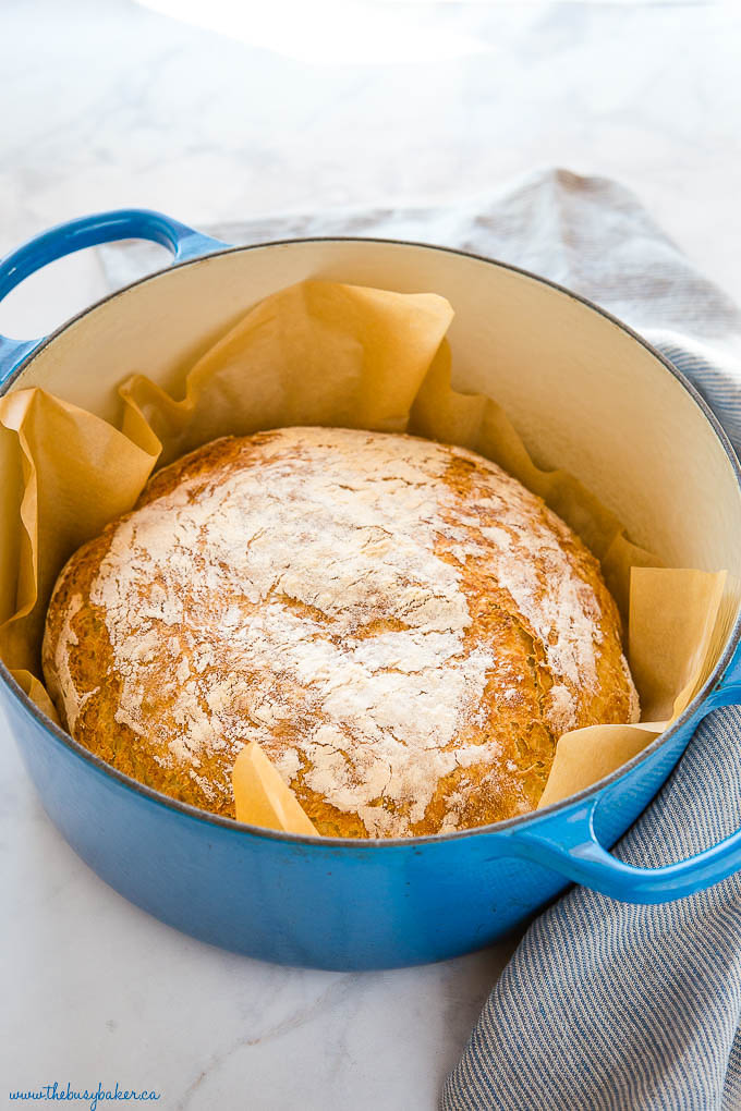 round loaf of baked no knead bread in a blue Dutch oven