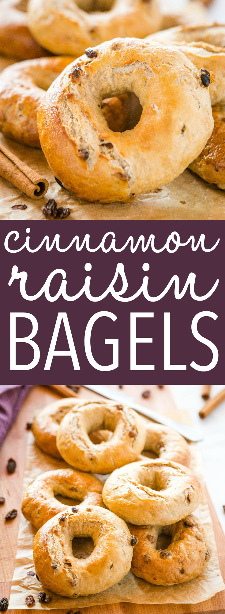 These Easy Homemade Cinnamon Raisin Bagels are perfectly dense & chewy, and packed with spicy cinnamon and juicy raisins. They're SO easy to make with no special equipment or ingredients, and no refined sugar! Recipe from thebusybaker.ca! #cinnamonraisin #bagels #Homemadebagels #howtomakebagels #baking #breakfast via @busybakerblog