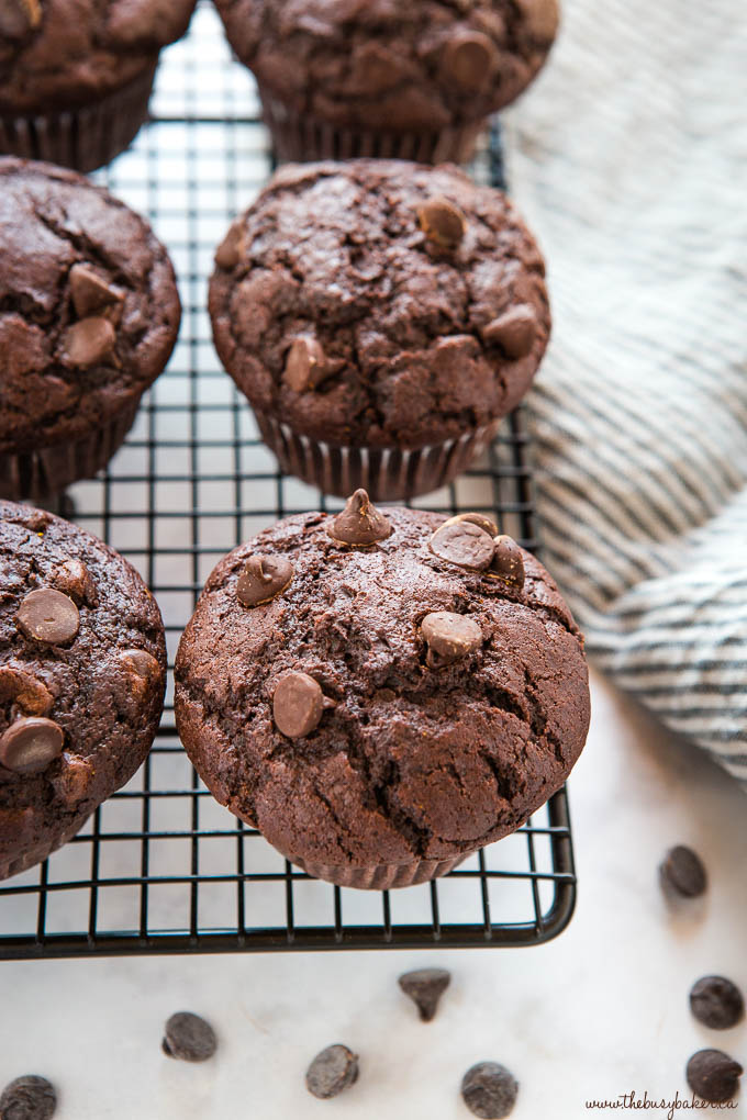 double chocolate chip muffins on black wire rack