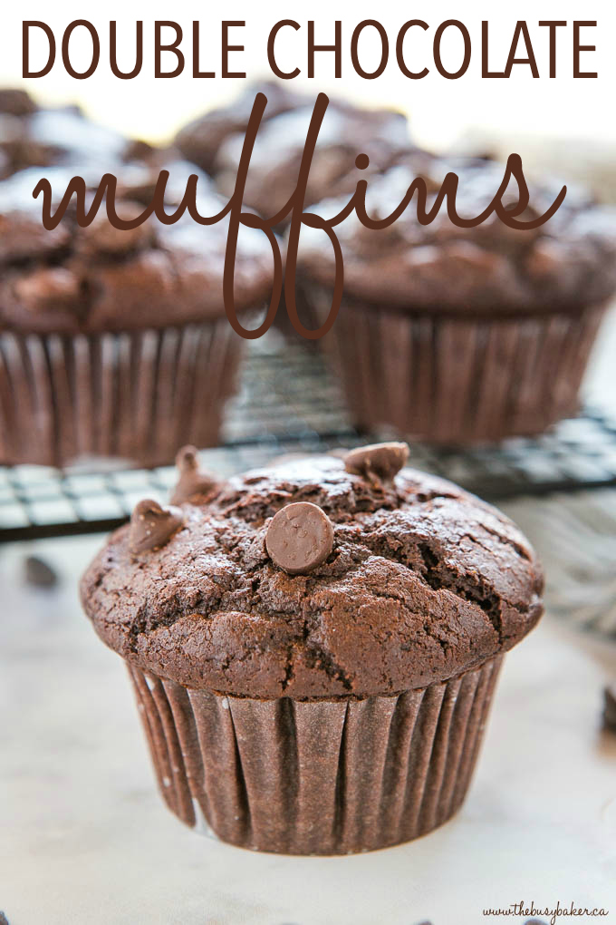 Best Ever Double Chocolate Muffins