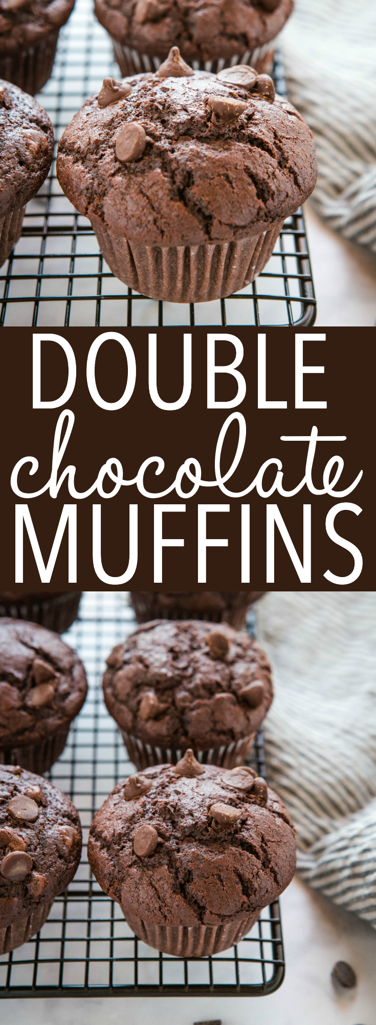 These Best Ever Double Chocolate Muffins are moist and chocolatey, and packed with chocolate chips! Easy to make in only one bowl! Recipe from thebusbaker.ca! #chocolate #doublechocolate #muffins #baking #afterschool #cake #recipe via @busybakerblog