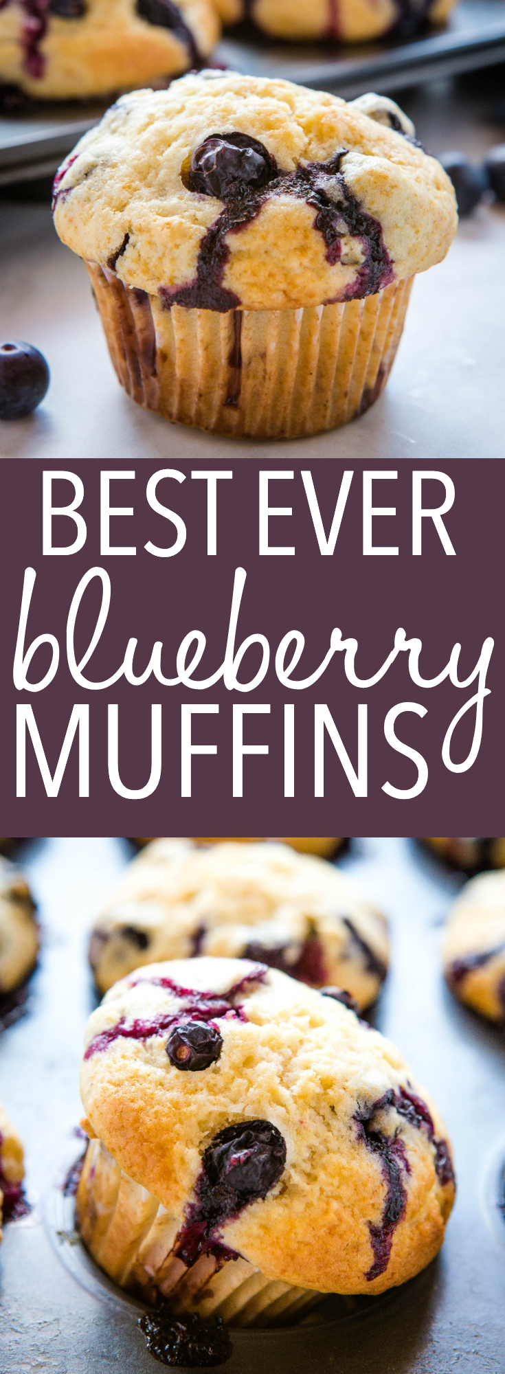 These Best Ever Blueberry Muffins are the perfect sweet treat for breakfast, brunch or snack. Make this recipe for moist, tender muffins full of fresh juicy blueberries! Recipe from thebusybaker.ca! #bloueberries #muffins #blueberrymuffins #muffinsrecipe #besteverblueberrymuffins via @busybakerblog